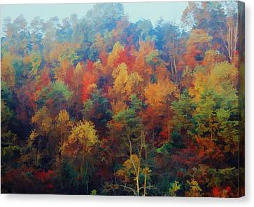 Canvas Print featuring the photograph Autumn Hill Aglow by Diane Alexander