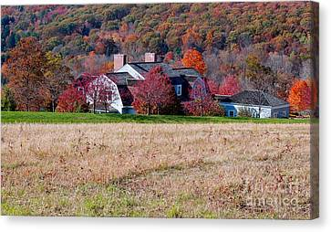 Autumn House Canvas Print by Andrea Simon