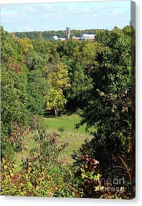 Autumn In Ann Arbor Canvas Print by Phil Perkins
