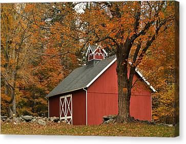 Autumn In Aspetuck Canvas Print by Laura DAddona