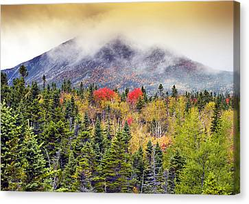 Autumn In Baxter State Park Maine Canvas Print by Brendan Reals