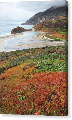 Autumn In Big Sur California Canvas Print by Pierre Leclerc Photography