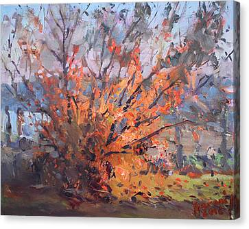 Autumn In Late Evening Canvas Print by Ylli Haruni