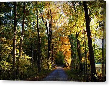 Autumn In Missouri Canvas Print by Cricket Hackmann