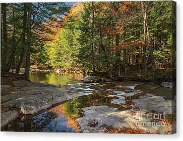 Autumn In New Hampshire Canvas Print