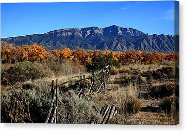 Autumn In New Mexico Canvas Print by Anthony Sekellick
