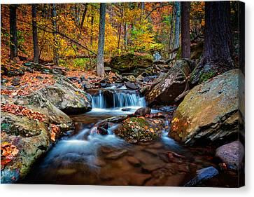 Autumn In New York Canvas Print by Rick Berk