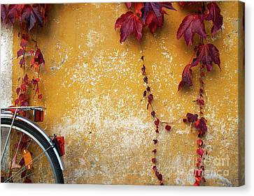 Canvas Print featuring the photograph Autumn In Red by Yuri Santin