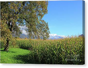 Autumn In Swiss Mountain Landscape Canvas Print