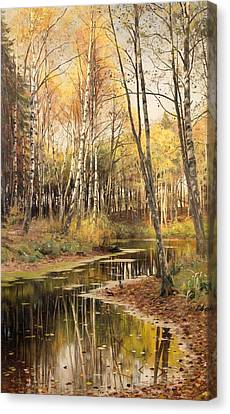 Autumn In The Birchwood Canvas Print by Mountain Dreams