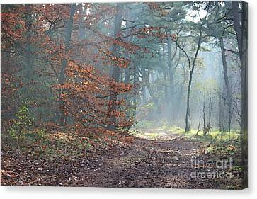 Autumn In The Forest, Painting Like Photograph Canvas Print