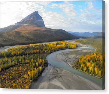 Autumn In The Koyukuk River Valley Canvas Print