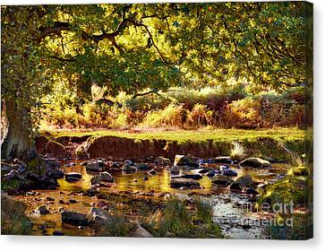 Autumn In The Lin Valley Canvas Print by John Edwards