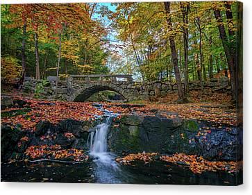 Autumn In Vaughan Woods Canvas Print by Rick Berk