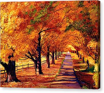 Autumn In Vermont Canvas Print by David Lloyd Glover
