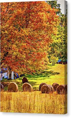 Autumn In West Virginia Canvas Print by Steve Harrington