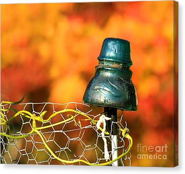 Canvas Print featuring the photograph Autumn Insulator by Debbie Stahre