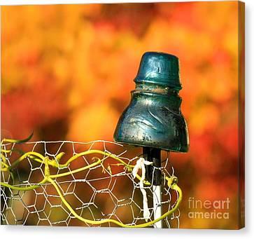 Autumn Insulator Canvas Print