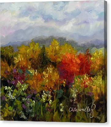 Autumn Jewels Canvas Print by Chris Brandley