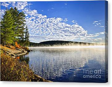 Autumn Lake Shore With Fog Canvas Print by Elena Elisseeva