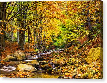 Autumn Landscape Canvas Print by Evgeni Dinev