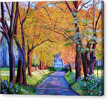 Autumn Lane Canvas Print by David Lloyd Glover