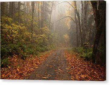 Autumn Leaf Canvas Print - Autumn Lane by Mike  Dawson