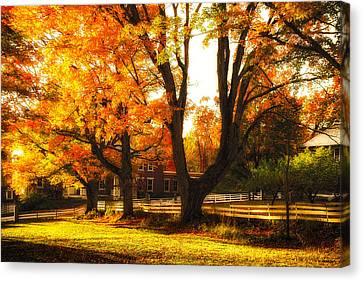 Canvas Print featuring the photograph Autumn Lane by Robert Clifford