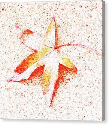 Autumn Leaf Art Canvas Print