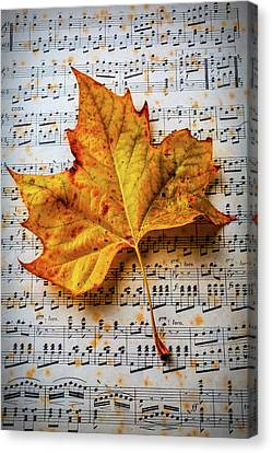 Autumn Leaf On Sheet Music Canvas Print by Garry Gay