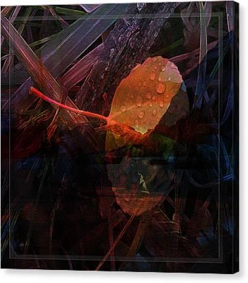 Canvas Print featuring the digital art Autumn Leaf by Stuart Turnbull