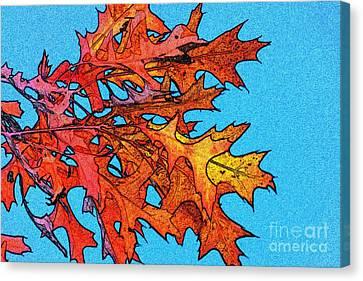 Autumn Leaves 14 Canvas Print