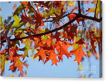Autumn Leaves 16 Canvas Print by Jean Bernard Roussilhe
