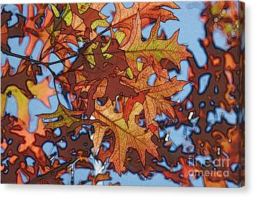 Autumn Leaves 17 - Variation  2 Canvas Print by Jean Bernard Roussilhe