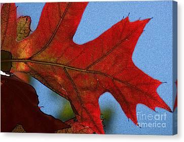 Autumn Leaves 18 Canvas Print by Jean Bernard Roussilhe