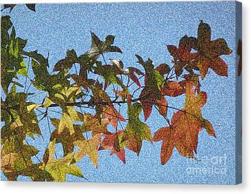 Canvas Print featuring the photograph Autumn Leaves 3 by Jean Bernard Roussilhe