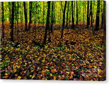 Autumn Leaves And Forest Canvas Print by Robert Gaines