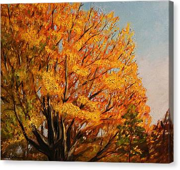 Autumn Leaves At High Cliff Canvas Print by Daniel W Green