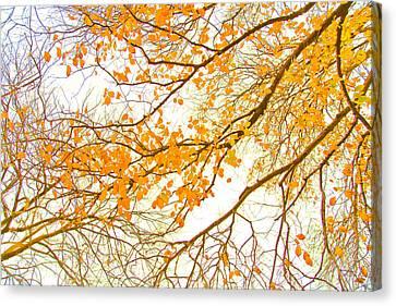 Beautiful Autumn Day Canvas Print - Autumn Leaves by Az Jackson