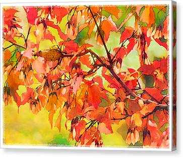 Autumn Leaves Canvas Print by Christina Lihani
