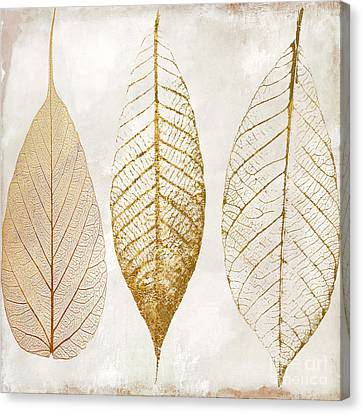 White Flower Canvas Print - Autumn Leaves IIi Fallen Gold by Mindy Sommers