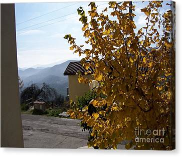 Autumn Leaves Canvas Print by Judy Kirouac