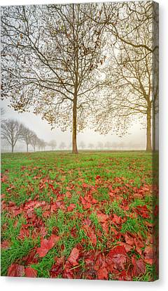 Canvas Print featuring the photograph Autumn Leaves Near To Far Super High Resolution by William Lee