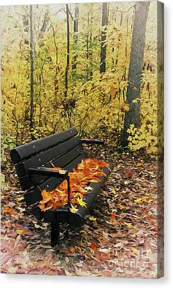 Canvas Print featuring the painting Autumn Leaves On A Bench Ap by Dan Carmichael