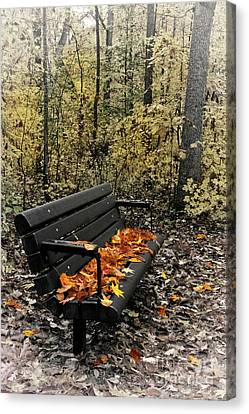 Canvas Print featuring the photograph Autumn Leaves On A Bench by Dan Carmichael