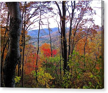 Autumn Leaves On Blue Ridge Parkway Canvas Print by Lori Miller