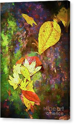Autumn Leaves On Mossy Tree Trunk Ap Canvas Print by Dan Carmichael