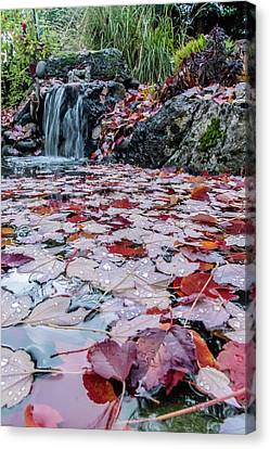 Autumn Leaves On The Pond Canvas Print by Mick Anderson