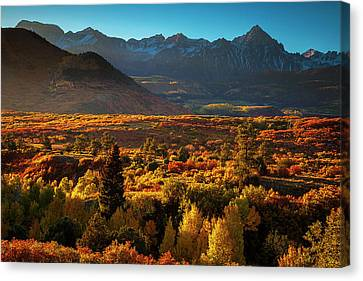 Canvas Print featuring the photograph Autumn Light by Andrew Soundarajan