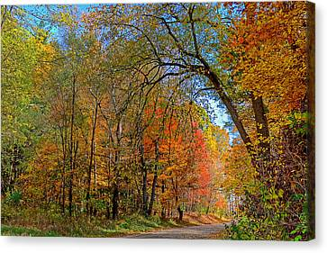 Canvas Print featuring the photograph Autumn Light by Rodney Campbell